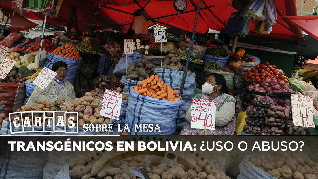 Transgénicos en Bolivia: ¿Uso o abuso?