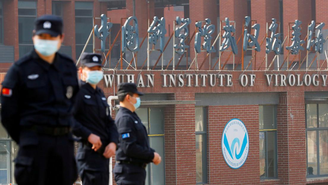 """Equipo de la OMS en Wuhan afirma que obtuvo datos sobre el origen del coronavirus """"que nadie ha visto antes"""""""