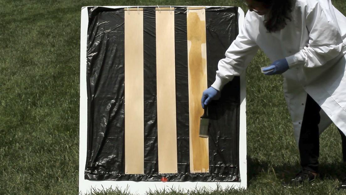 Encuentran un modo sencillo de volver transparente la madera (VIDEO)