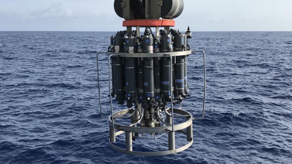 Descubren un inmenso ciclo de carbono en el océano que había pasado hasta ahora desapercibido para los científicos