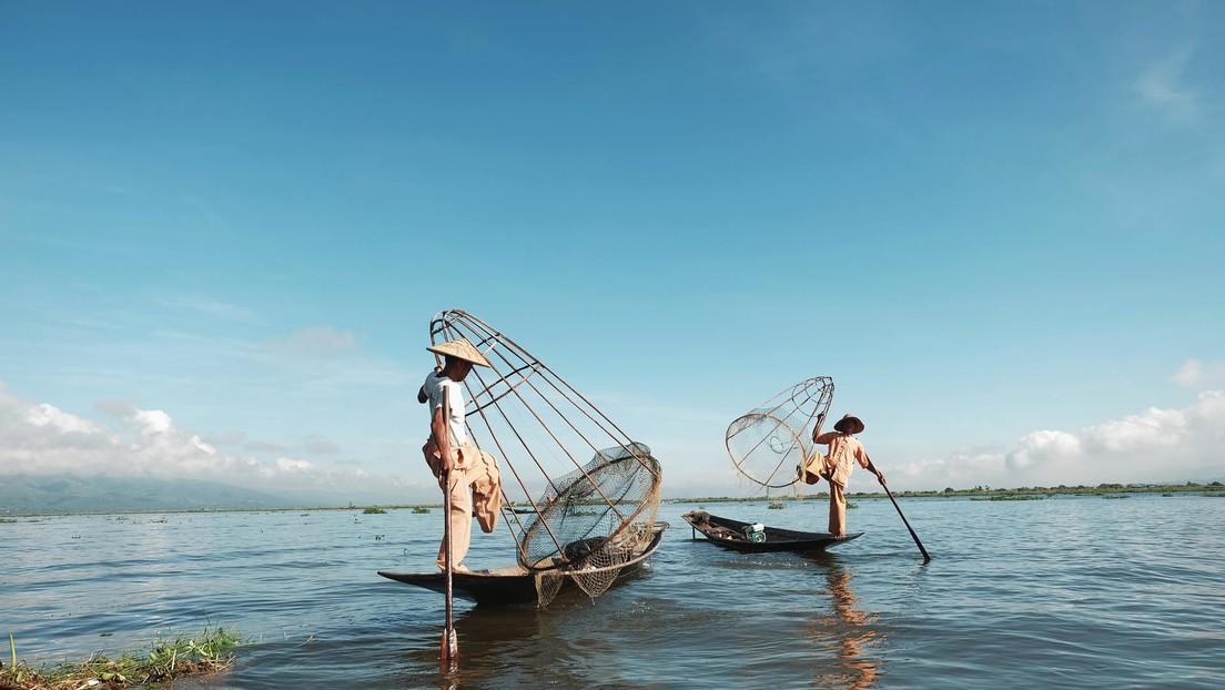 Pescadores encuentran una rara y costosa perla de color mandarina en Tailandia (FOTO)