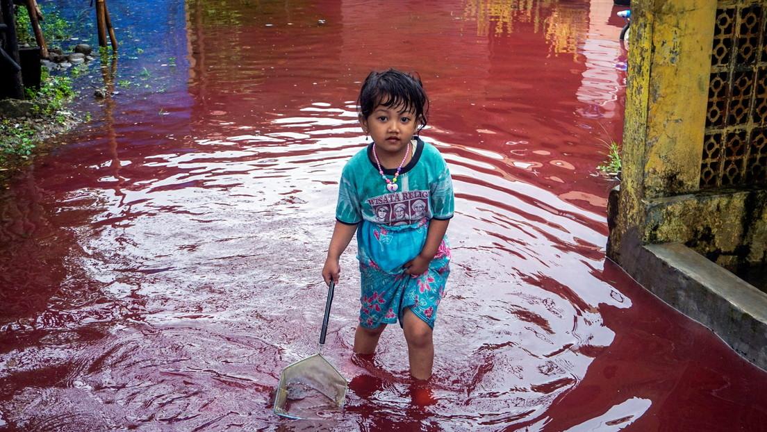 FOTOS, VIDEOS: El agua de una aldea india se vuelve de color 'rojo sangre' tras inudarse una fábrica de teñidos