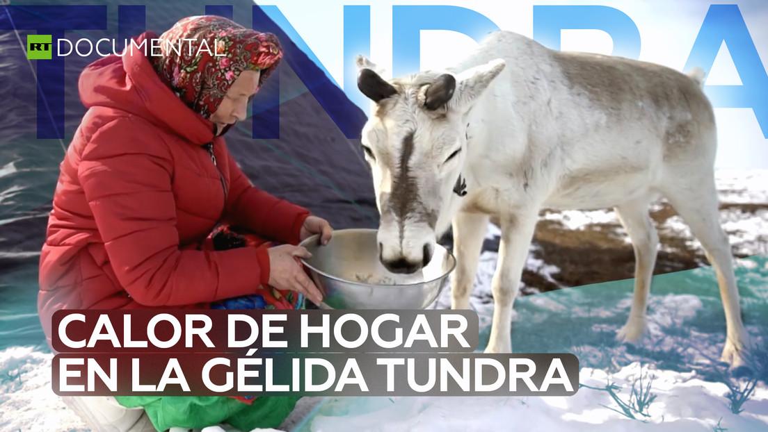 Amas de casa de la tundra: guardianas del calor del hogar en el gélido norte