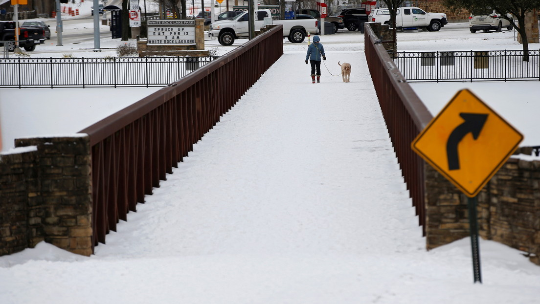 """""""¡En shock!"""": Encuentra su pecera congelada por la tormenta invernal en Texas e intentar revivir a sus mascotas (VIDEOS)"""