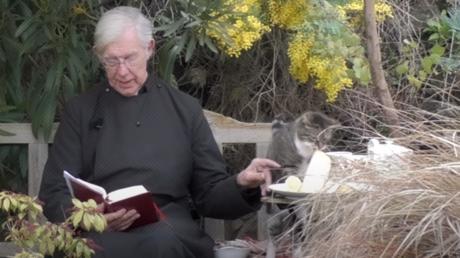 VIDEO: Un gato le roba un crepe a un sacerdote en pleno sermón