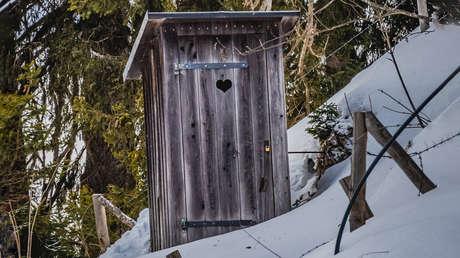 """""""Algo me mordió el trasero"""": una mujer encuentra un oso dentro de una letrina en Alaska"""
