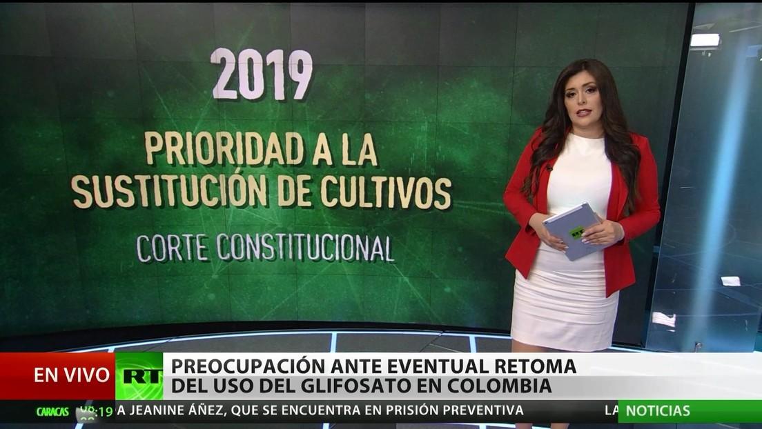 Preocupación ante la eventual retoma del uso del glifosato en Colombia