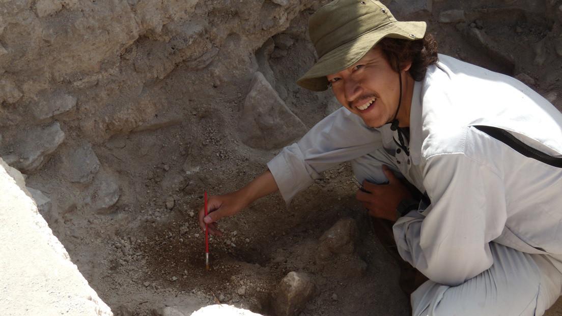 Cráneo aplanado y dentadura incompleta: restos óseos hallados en México permiten reconstruir la vida de un embajador maya