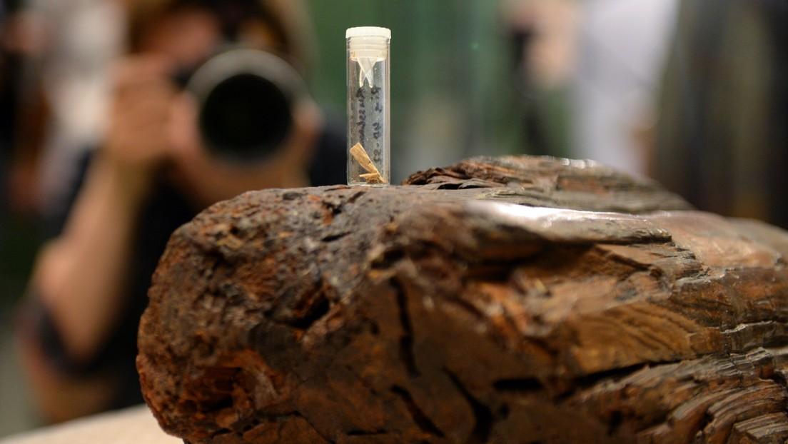 La escultura de madera más antigua del mundo podría tener incluso más años de lo que se creía