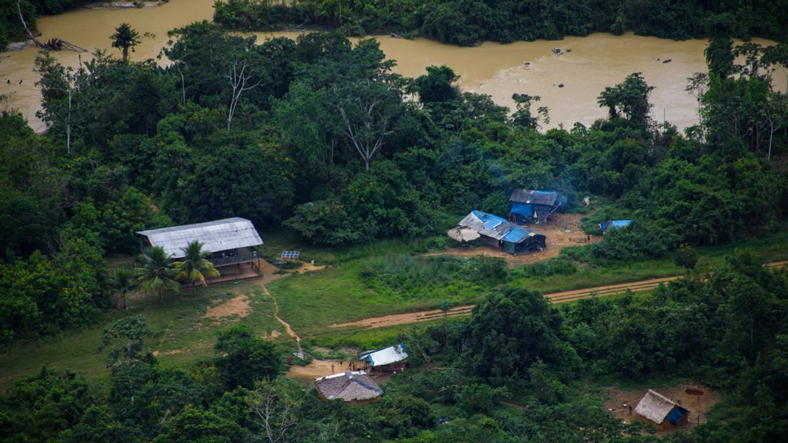 Un informe denuncia que la minería ilegal en Brasil devastó en 2020 un área equivalente a 500 campos de fútbol  en tierras yanomamis