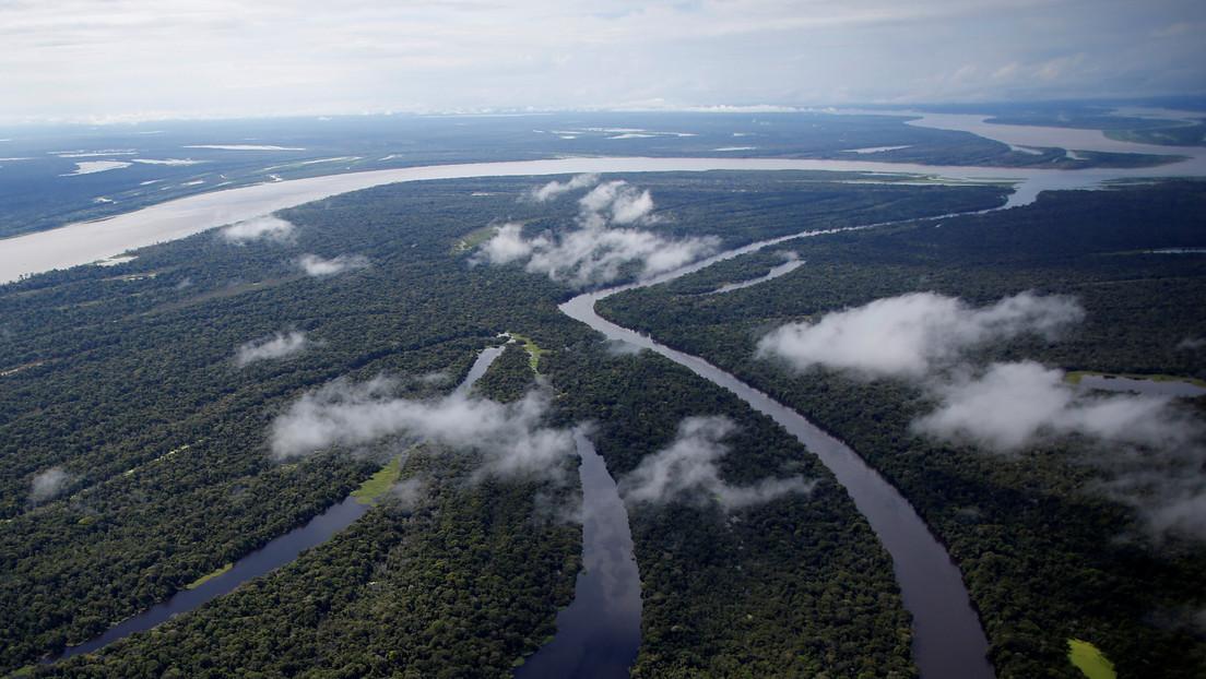 El asteroide que acabó con los dinosaurios habría creado la selva amazónica