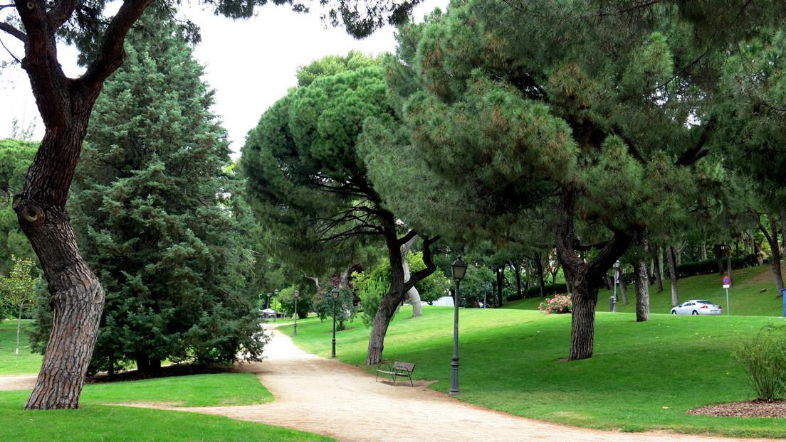 Detenidos 13 jóvenes acusados de abusar sexualmente de una adolescente en un parque de Madrid