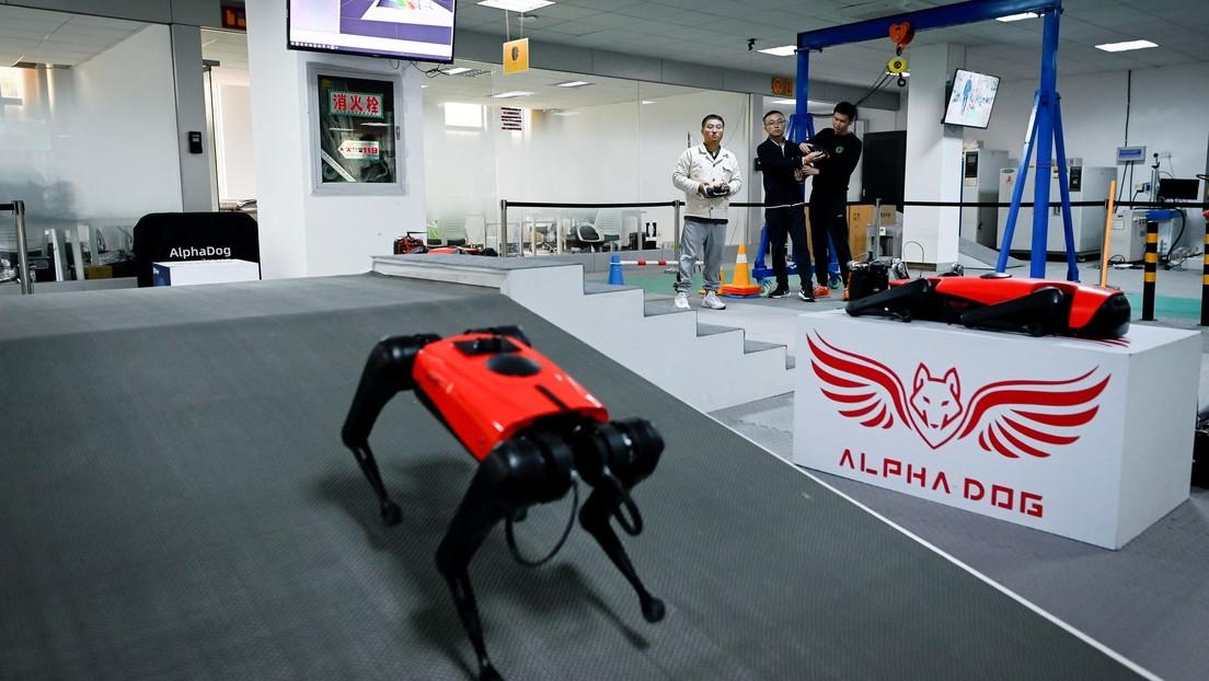 FOTO: China crea con ayuda del 5G un perro robot que imita los hábitos de uno real y sería el más rápido del mercado
