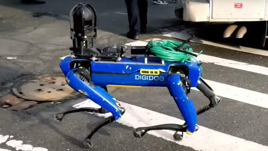La aparición de un perro robot durante una detención en Nueva York causa revuelo en las redes (VIDEO)