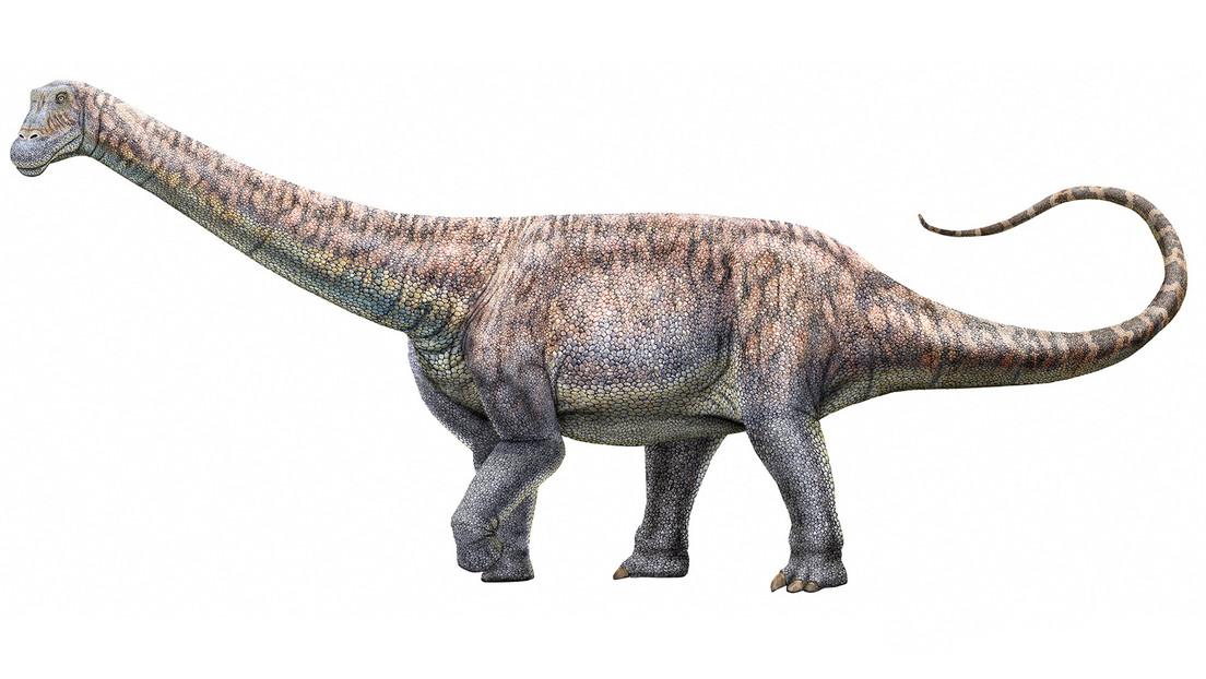 Chile identifica una nueva especie de dinosaurios que habitó hace millones de años en el desierto de Atacama