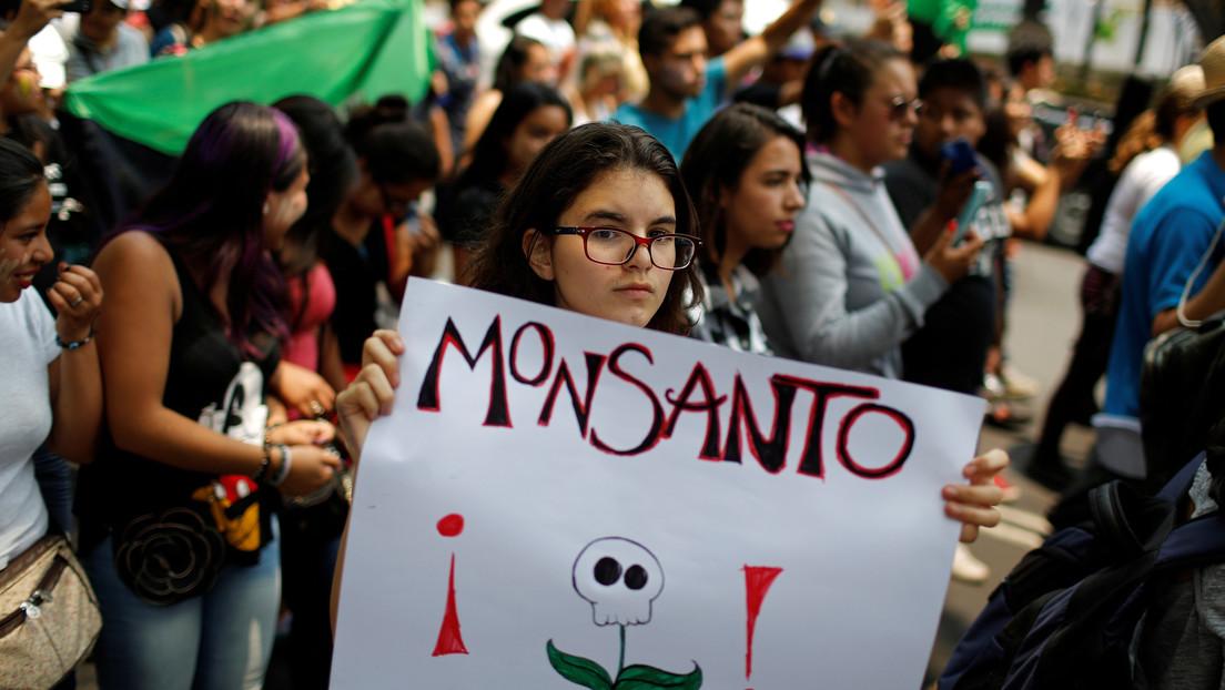 México en guerra contra el glifosato: Poder Judicial, el último resquicio de Bayer-Monsanto