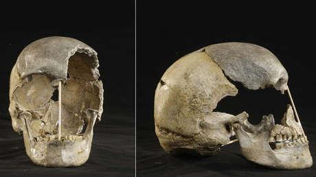 Un cráneo de hace 45.000 años permite identificar el genoma más antiguo correspondiente a los humanos modernos de Europa conocido hasta la fecha