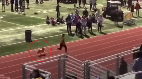 VIDEO: Una perra se cuela en una carrera de atletismo en EE.UU. (y cruza la  meta en primer lugar) - RT