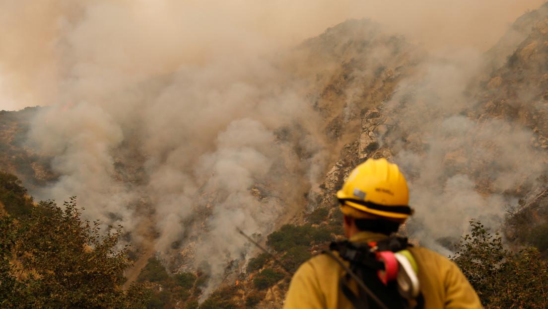 Hallan en California una secuoya gigante que arde desde los incendios forestales del año 2020