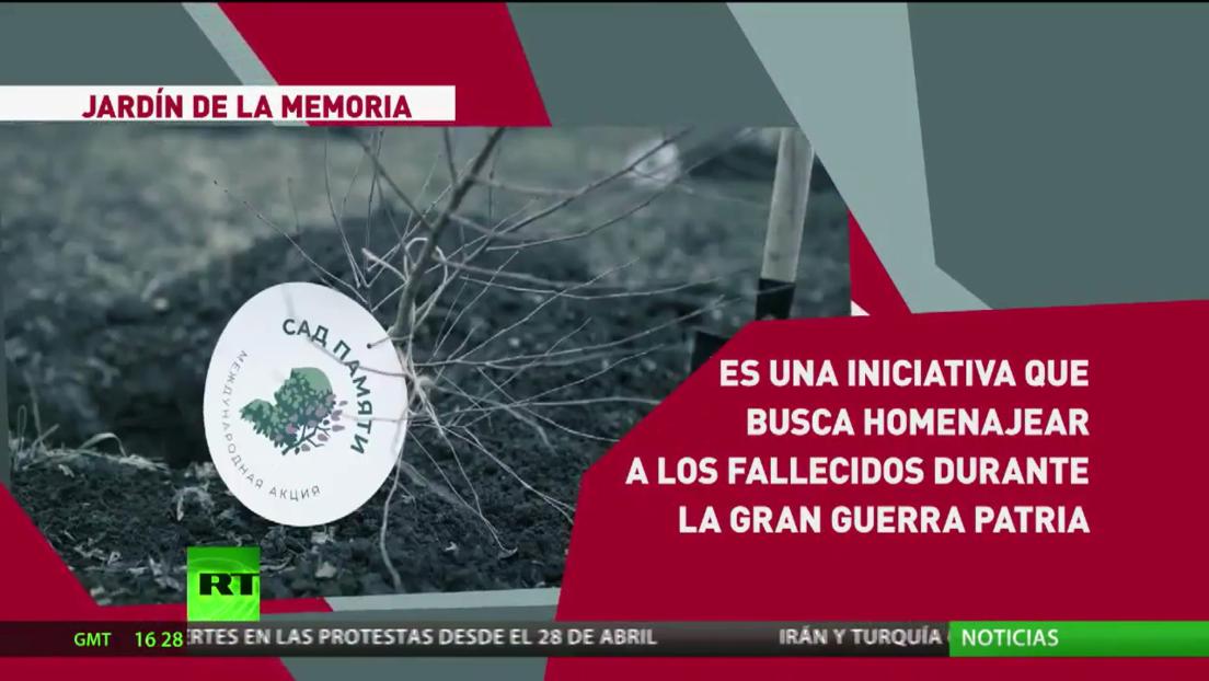 Lanzan la iniciativa Jardín de la Memoria para conmemorar a los 27 millones de personas que perdieron la vida en la Gran Guerra Patria