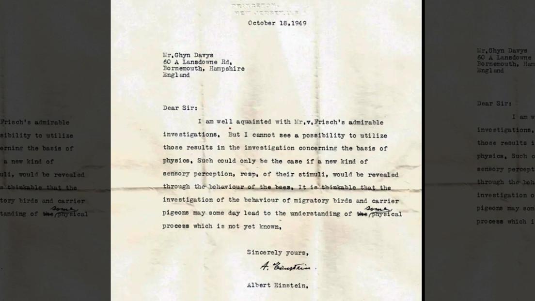 Descubren una carta perdida de Einstein que predice la existencia de supersentidos animales décadas antes de que surja la evidencia