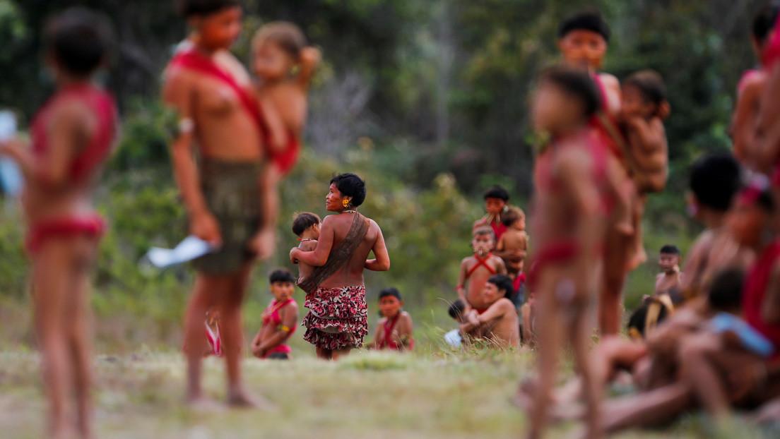 La impactante foto de una niña yanomami desnutrida que evidencia el abandono de los pueblos indígenas en Brasil