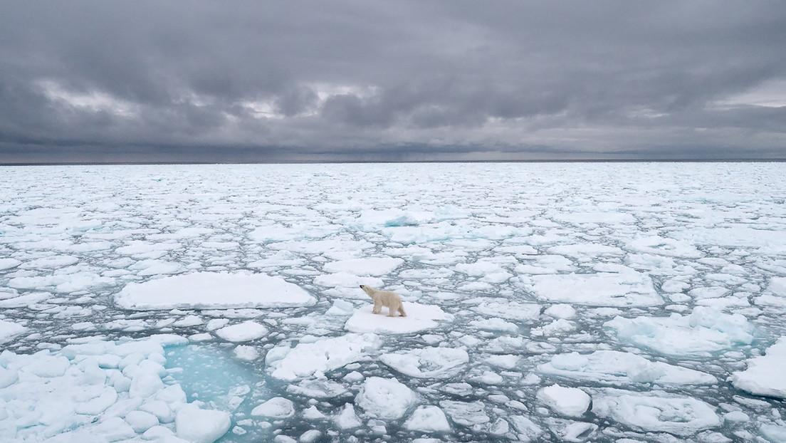 El Ártico se calienta tres veces más rápido que la superficie del resto del planeta
