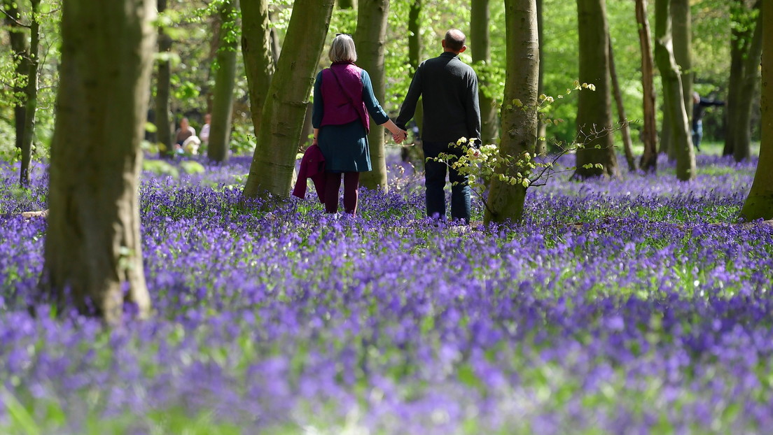 Científicos determinan que incluso los paseos breves y esporádicos contribuyen a una mayor longevidad