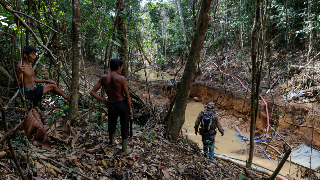 Cómo la masiva invasión de los mineros ilegales golpea a los indígenas yanomami