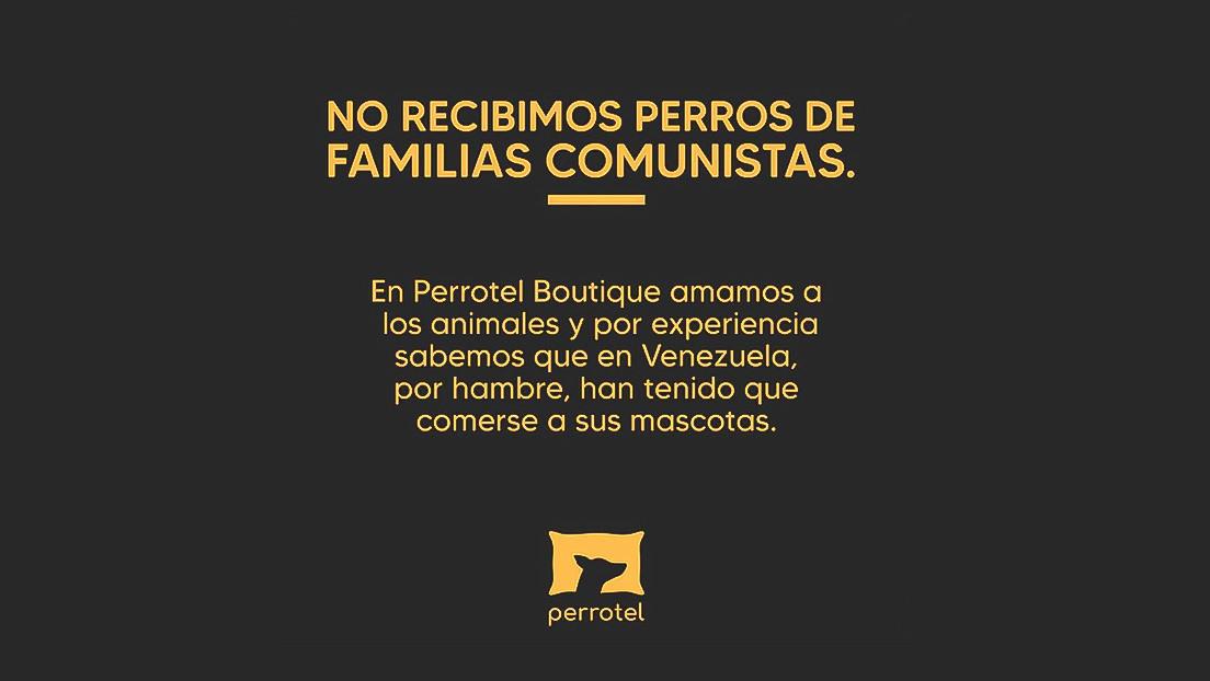 """""""No recibimos perros de familias comunistas"""": La insólita prohibición de la dueña de un albergue canino en Perú"""