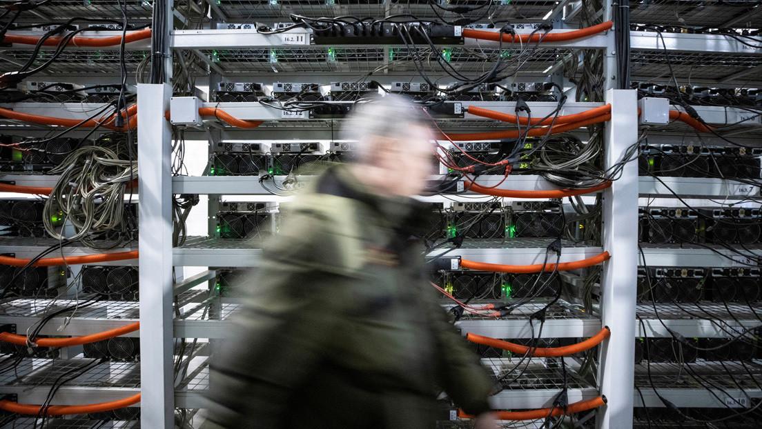 """Policía allana una granja de marihuana y descubre que en realidad se trataba de una """"mina de bitcoines"""""""
