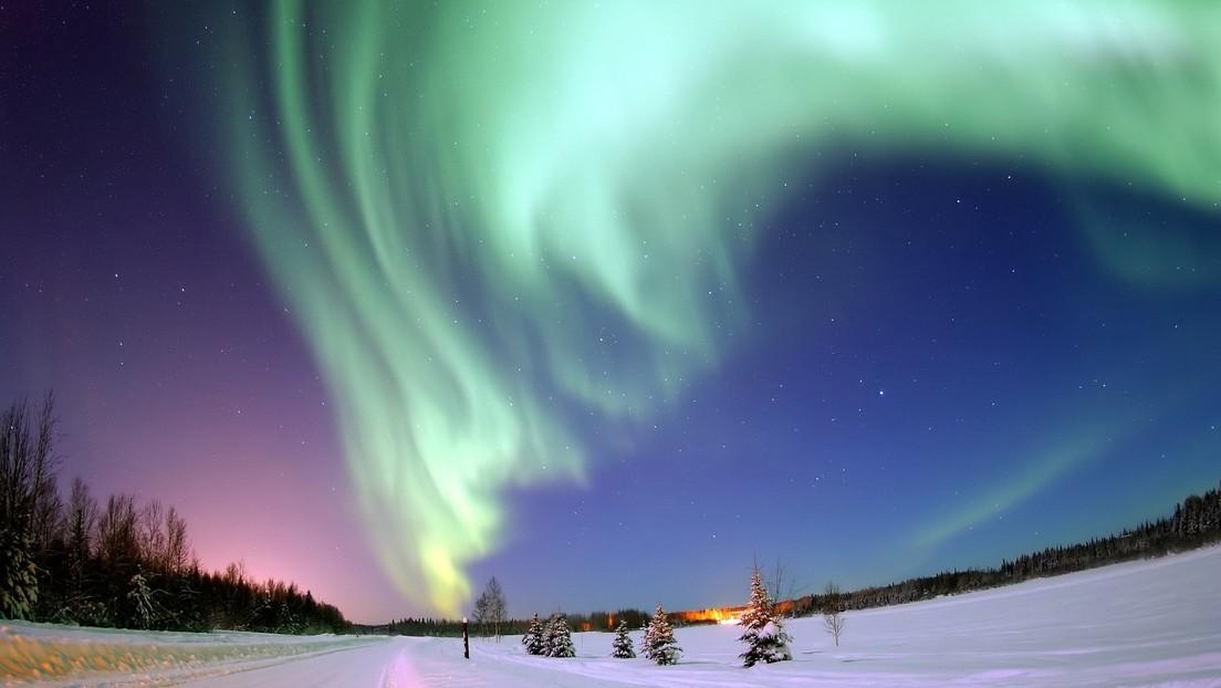 FOTO:El espectacular 'posado' de un reno con la aurora boreal de fondo