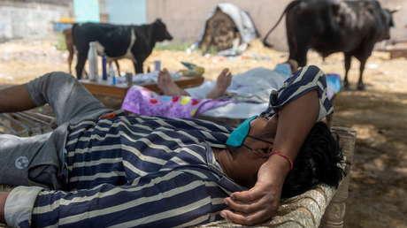 Unicef: Otros países podrían seguir los pasos de la India si los más ricos no donan su excedente de vacunas