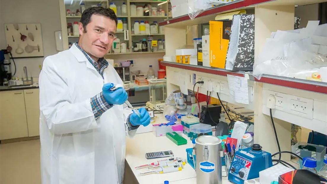 Científicos logran retrasar el envejecimiento en ratones y esperan que el método pueda funcionar en humanos
