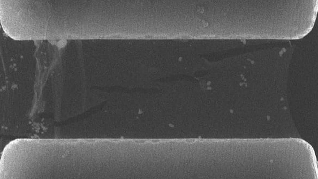 """""""Nadie esperaba ver esto en materiales 2D"""": Determinan una materia bidimensional 10 veces más resistente a la fractura que el grafeno"""