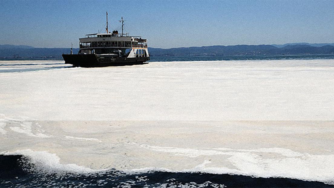 Una viscosa, grisácea y fétida capa de 'moco de mar' se extiende por las costas de Turquía, amenazando los ecosistemas marinos