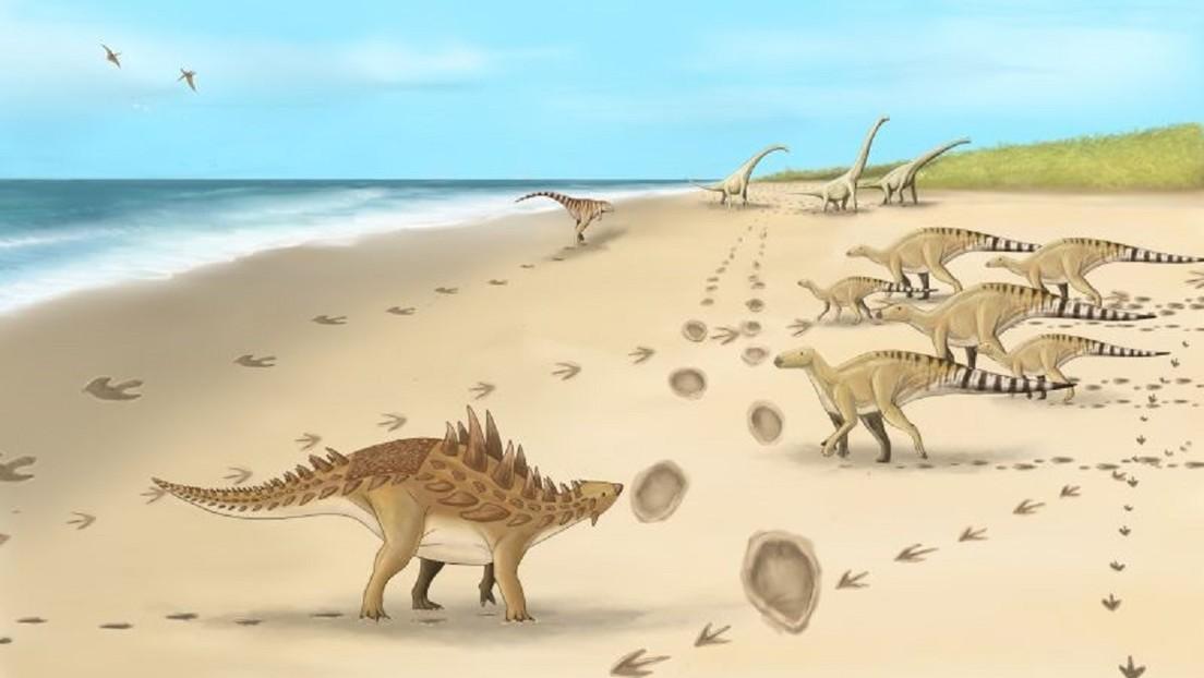 Descubren las huellas de los últimos dinosaurios que caminaron por Reino Unido hace 110 millones de años