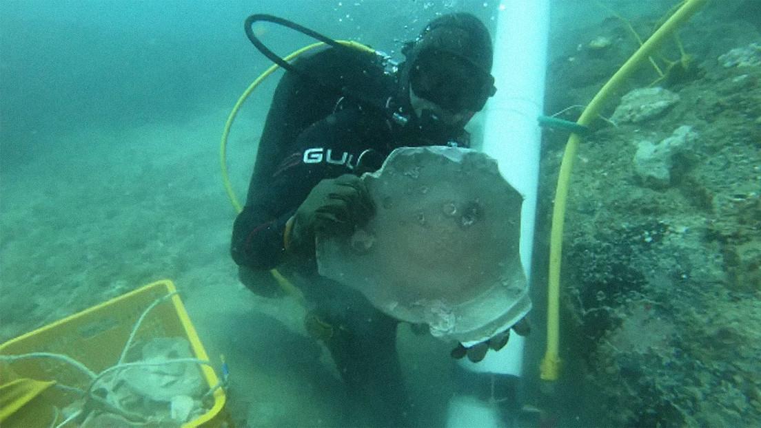 """Hallan restos de dos naufragios de hasta 600 años de antigüedad con una variedad de piezas """"raras"""" frente a las costas de Singapur (FOTOS, VIDEO)"""