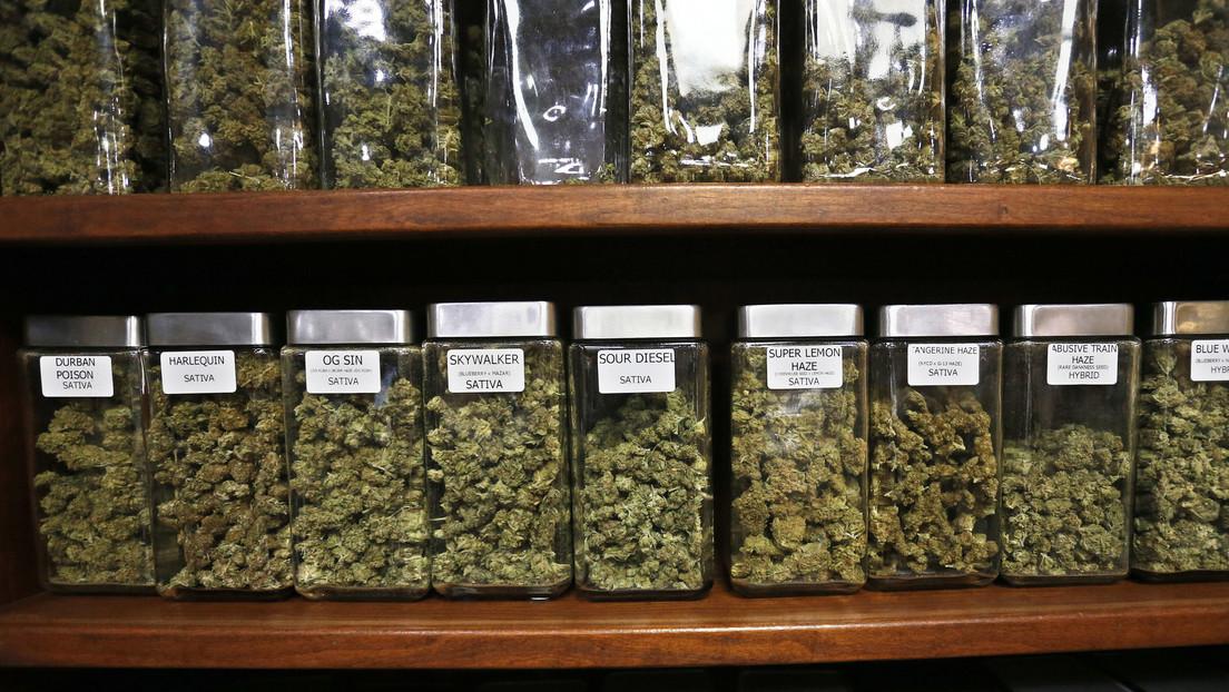 Crece el número de mujeres y representantes de la generación Z en EE.UU. entre quienes prueban marihuana por primera vez