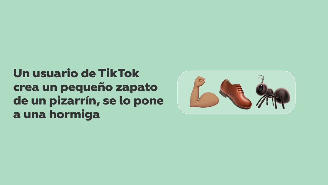 VIDEO: Un usuario de TikTok crea pequeños zapatos de tiza, se los pone a una hormiga y se hace viral en la Red
