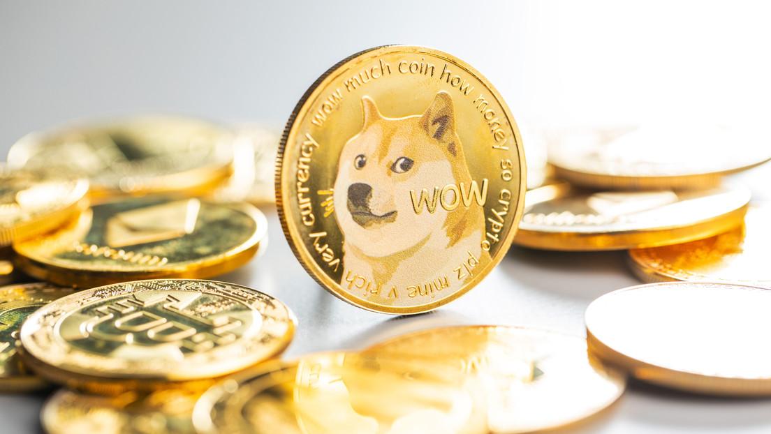 Un misterioso gran inversor de dogecoines pierde 17.000 millones de dólares de su fortuna