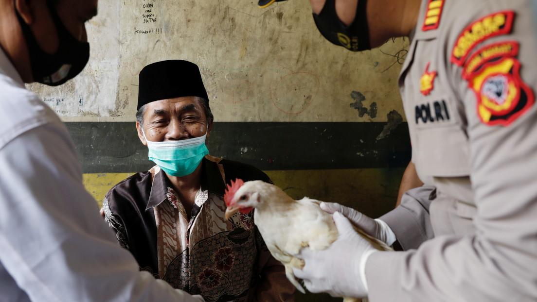 Vacas, pollos, armas, autos o dinero: Los incentivos para acelerar la vacunación contra el covid-19 en distintos países