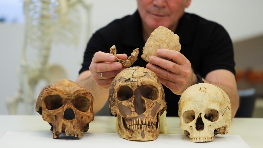 'Homo Nesher Ramla': descubren una nueva especie humana en Israel