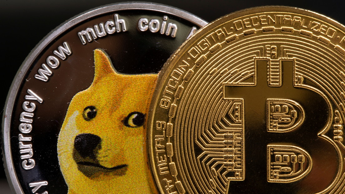 Elon Musk 'renews' his support for dogecóin and trolls Bitcoin advocates (including Twitter CEO)