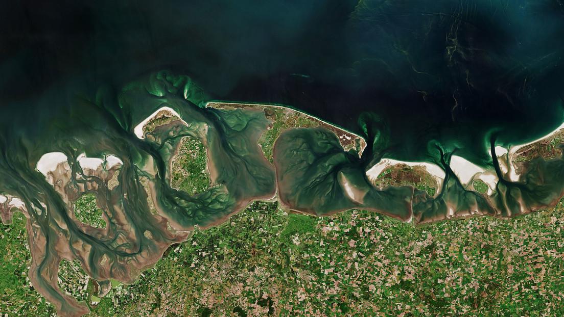 Publican una imagen satelital de una gran floración de algas en el mar del Norte