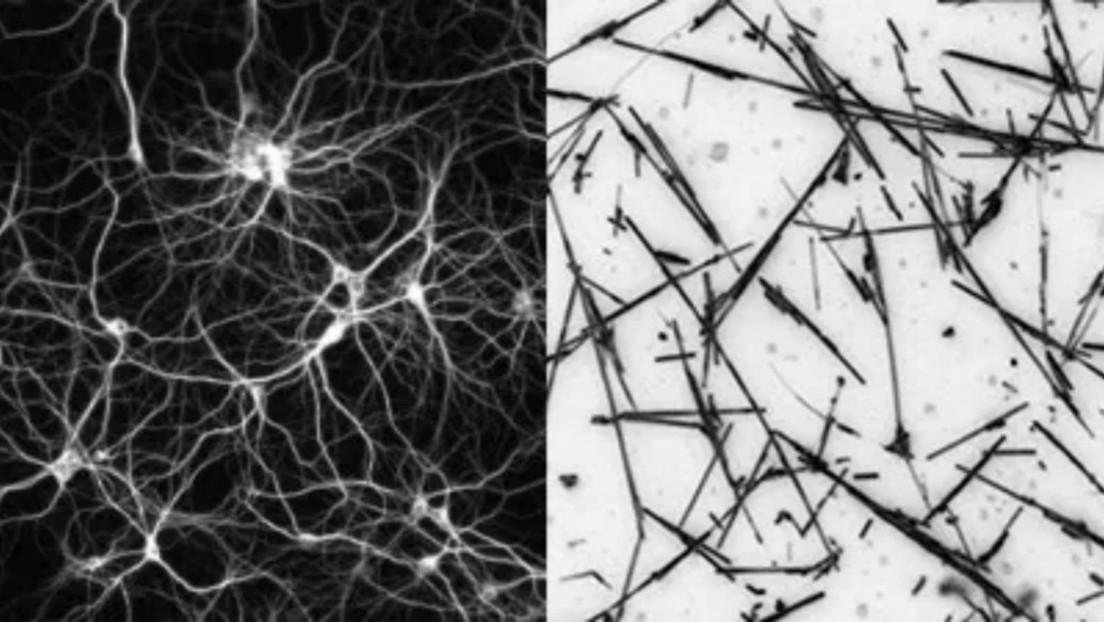 """Crean una red de nanocables similar a una estructura neuronal que opera eficientemente cuando está """"al borde del caos"""""""