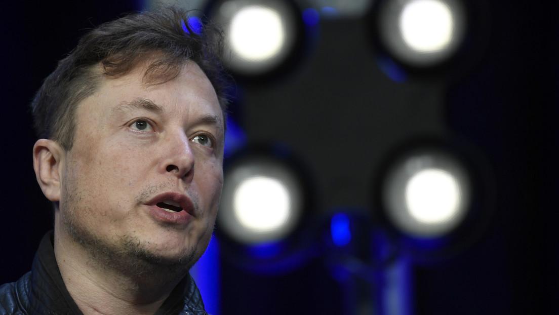 Elon Musk sugiere que un parásito del cerebro nos hace crear la IA superhumana