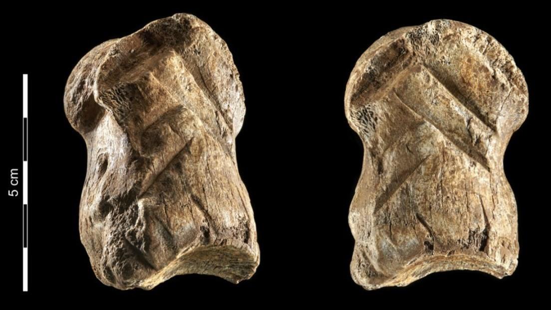 Hallan un hueso tallado por neandertales hace más de 51.000 años que obliga a revisar el origen del arte