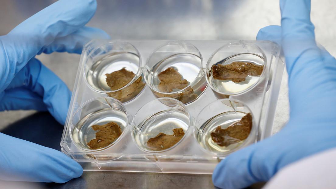 Una 'startup' que creó carne en 3D en el espacio recauda más de 100 millones de dólares