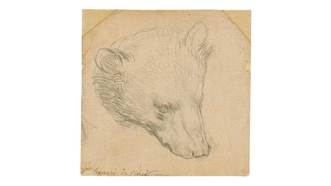 El dibujo 'Cabeza de oso' de Leonardo da Vinci logra un precio récord en una subasta